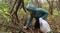 Boy picking mushrooms in the forest Stock Footage