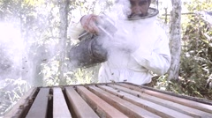 Hispanic apiarist smoking the bees Stock Footage