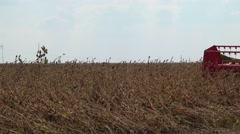 Soybean Harvest Combine  Stock Footage