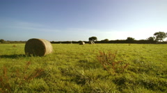 Field of round haystacks. Camera travelling and take off. 4K UHD sunny aerial. Stock Footage