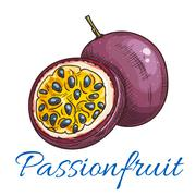 Passion fruit vector color sketch icon Stock Illustration