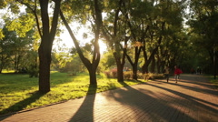 Brother and sister running down the path. children run along the avenue Stock Footage