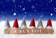 Gnomes, Blue Background, Snowflakes, Joyeux Noel Means Merry Christmas Stock Photos