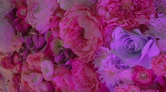 Decoration of Large Artificial Flowers Stock Footage