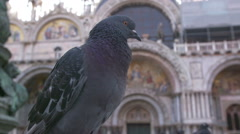 Basilica di San Marco cathedral church at San Marco or St. Marks square. Stock Footage