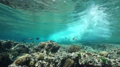 Sea wave breaking on the reef from underwater Stock Footage