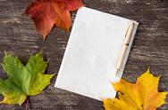 Withered leaves and blank paper page Stock Photos