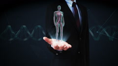 Businessman open palm, Rotating Female Human cardiovascular system, blood. Stock Footage