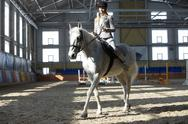A young blond woman training a horse Stock Photos