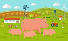 Pigs on Farmyard Concept Illustration Piirros