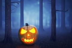 Halloween pumpkin in a mystical forest Stock Photos