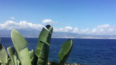 Sea horizon with banana tree leaves at front Stock Footage