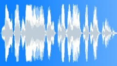 This material is copyright protected - voice watermark Sound Effect