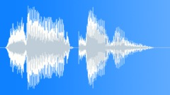 Preview File - voice watermark Sound Effect