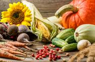 Harvest or Thanksgiving background Stock Photos