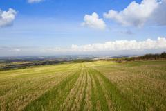 Yorkshire wolds vista Stock Photos