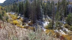 Beautiful autumn colored foliage with fresh snow; a river flows below and wind b Stock Footage