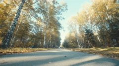 The guy and the girl made a trip by bicycle in the autumn forest Stock Footage
