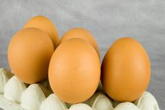 It is eggs very tasty and wholesome food Stock Photos