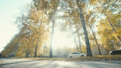 Bike Lane in the beautiful autumn forest. Hobby. Active leisure Stock Footage