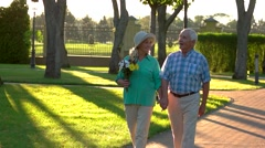 Senior couple holding hands. Stock Footage
