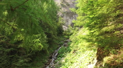 Water streaming from a giant cliff in a mountain forest Stock Footage