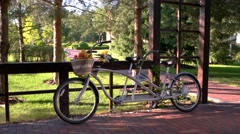 Bike with basket of fruits. Stock Footage