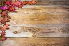 Thanksgiving  greeting with fall maple leaves on rustic wooden background Stock Photos