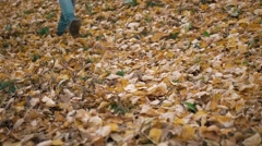 Feet boots walking on fall leaves Outdoor with Autumn season nature on Stock Footage