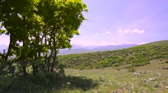 Girl mountainbiker cycling in nature on a rocky meadow, behind a tree Stock Footage