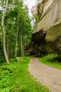 Path in forrest by rock wall Stock Photos