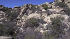 Fly Up Through Boulders Stock Footage