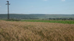 Large wheat and corn fields on a town's edge Stock Footage