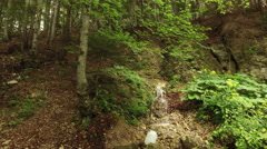 Mountain water springing from pipe between the trees in the forest Stock Footage