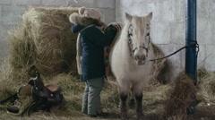 Girl Taking Care of Shetland Pony Stock Footage