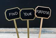 Business message FIND YOUR PURPOSE Stock Photos