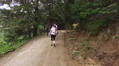 Group of hikers with walking sticks and backpacks on a forest trail in summer Stock Footage