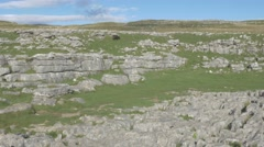 4K Black Sheep on Peak of Malham Cove Cliff Lime Stone Rocks Countryside Stock Footage
