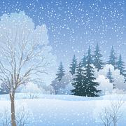 Winter Christmas Landscape Stock Illustration