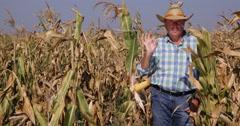 Good Farmland Production Beautiful Cornfield Harvest Farmer Make Ok Hand Gesture Stock Footage