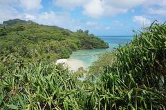 Secluded sandy beach with lush tropical vegetation Stock Photos