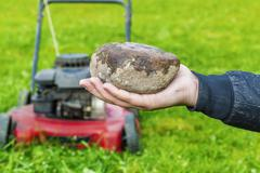 Man's hand with stone before lawn mower Stock Photos