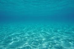 Natural underwater scene shallow sandy seabed Stock Photos