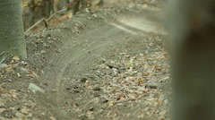 Mountain bike downhill on the trail in the woods of  slow motion Stock Footage