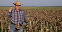 Farmer Presentation in Farmland Sunflower Culture Showing Thumbs Up Hand Gesture Stock Footage