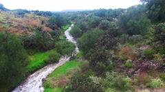 Aireal drone flying over the river in forest field in Mexico State Stock Footage