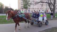 Children ride in a cart with horse in city park Stock Footage