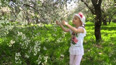 Funny girl at the age of 5 years in fun game and absorbedly smelling tree flower Stock Footage