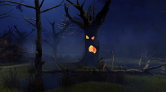 Fantastic spooky trees on swamp at misty night 4K Stock Footage