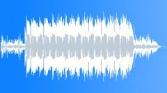 Electro Acoustic Ballade Stock Music